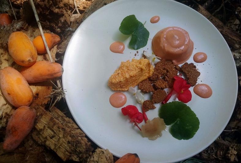 Plato hecho exclusivamente con frutas y hierbas de la selva guaraní. Hongos y una fruta denominada yacaratia, que aparece al costado.