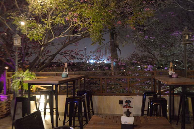 Un aspecto de la terraza del tercer nivel. Allí generalmente concurren los más jóvenes, en medio de las copas de los tajis florecidos. A lo lejos, las luces de la nueva olla azulgrana.