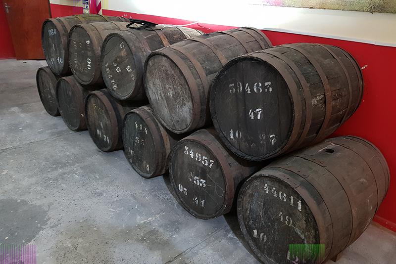 Los viejos toneles de roble francés de CAPASA. Algunos están hechos con maderas que tienen más de 130 años. Habían 21 millones de estos barriles que fueron dilapidandose a través del tiempo. Ahora quedan en la institución 2 millones de barriles.