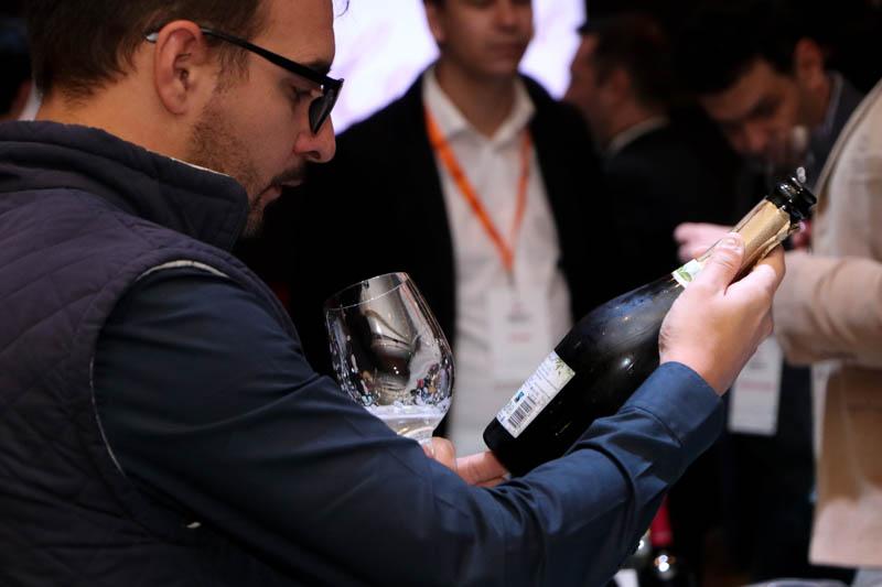 Oleada de vinos directo de Argentina